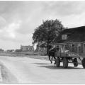 marrum-1960-zicht-op-trijetunen-bron-tresoar.png